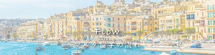 マルタ留学の流れ トップ 画像